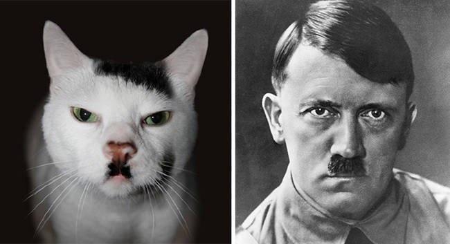 Heil Kitler.