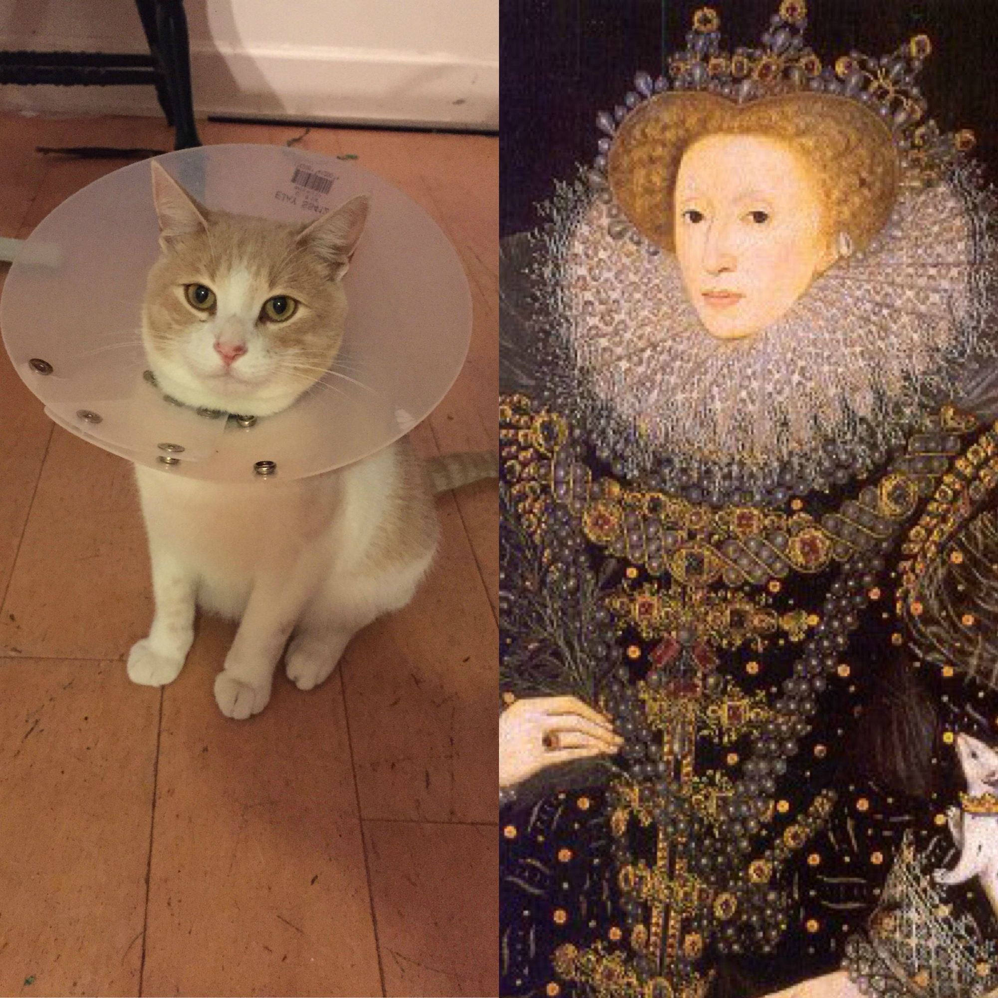Well, they do call it an Elizabethan collar.