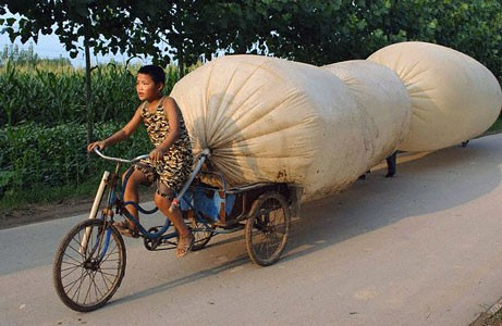 Unusual Transportation 36