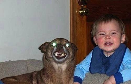 This baby and his demon friend.
