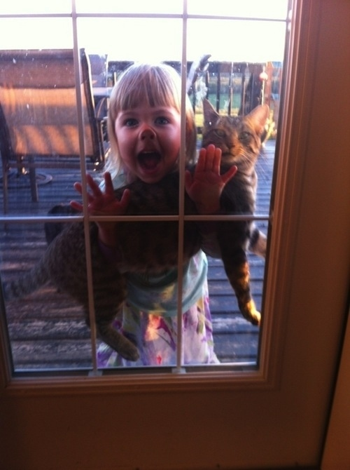 This kid and her terrified pet.