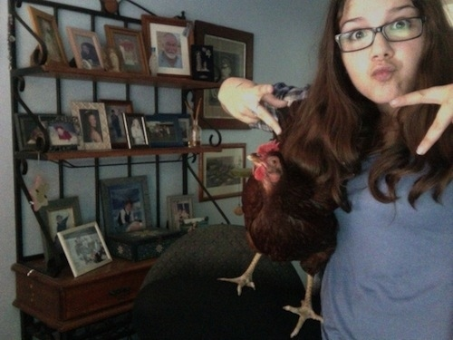This girl taking selfies with her chicken.
