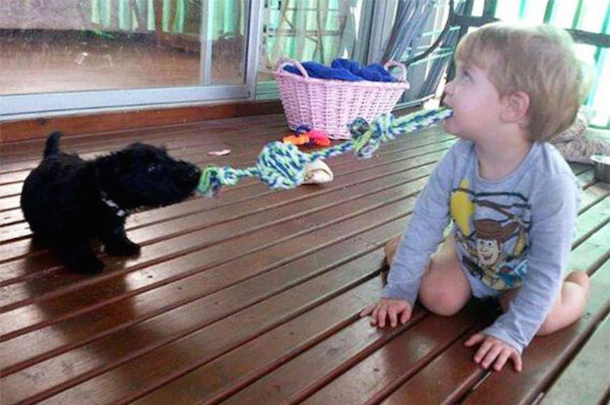 kids-act-like-animals-playing-like-a-puppy__605