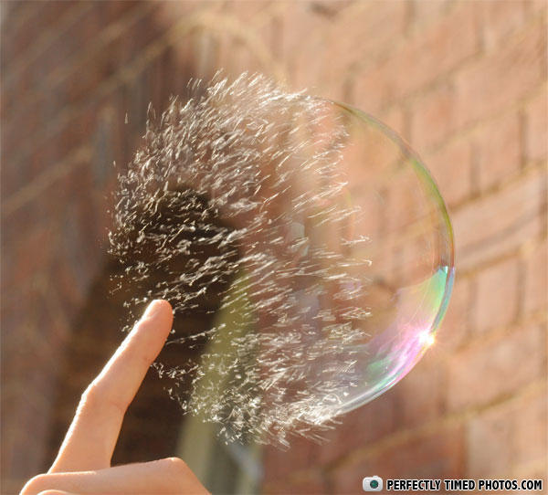 Perfectly Timed - Photos Taken At The Right Moment (2)