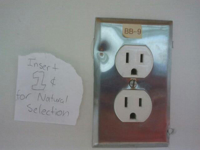 natural-selection-funny