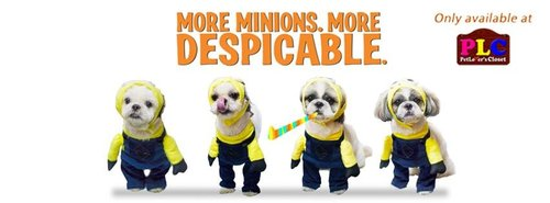 minion dog costumes
