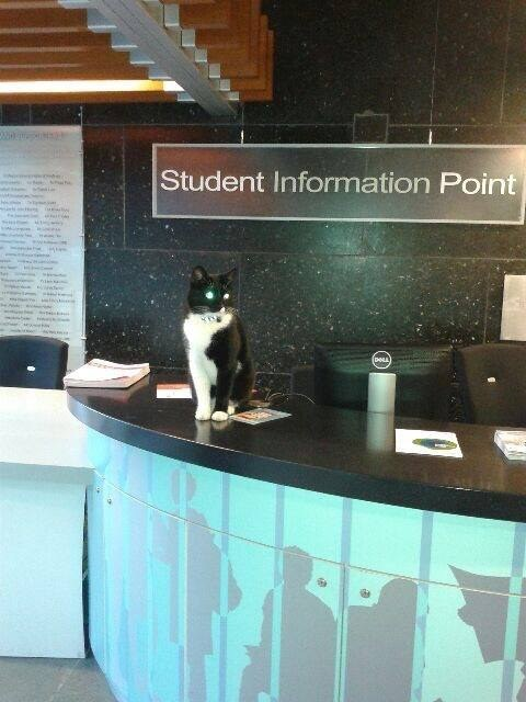 The student information point? That too.